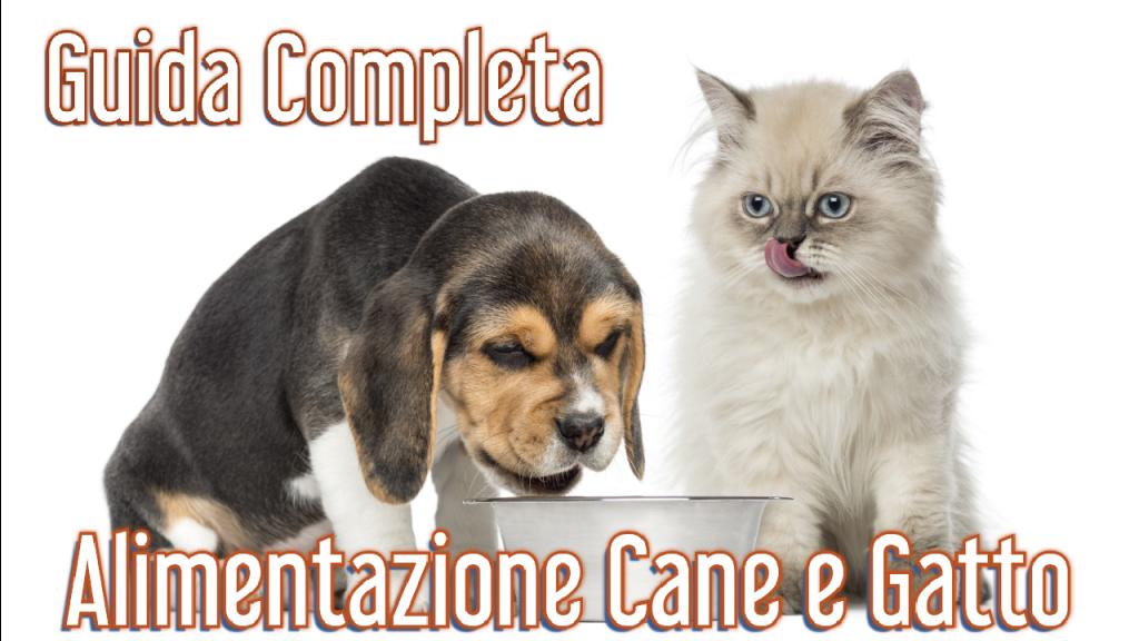 guida completa per l'alimentazione di cane e gatto